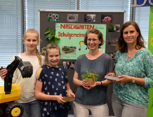 Bischöfliches Angela-Merici-Gymnasium: Ein Naschgarten für unsere Schulgemeinschaft