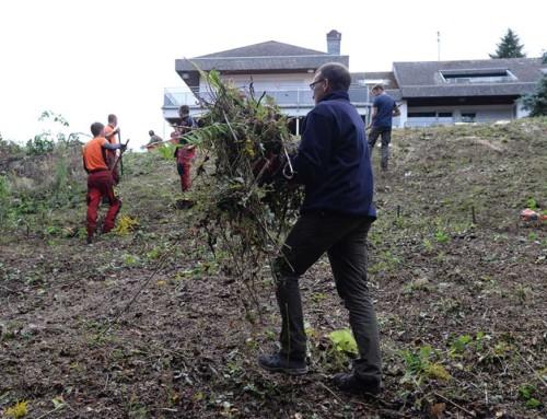 Johanniter-Unfall-Hilfe e.V. – RV Trier-Mosel: Garten für die Kinder